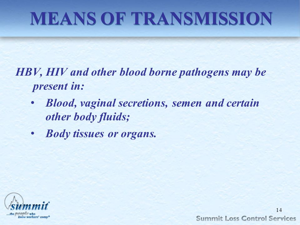 MEANS OF TRANSMISSION HBV, HIV and other blood borne pathogens may be present in: Blood, vaginal secretions, semen and certain other body fluids;