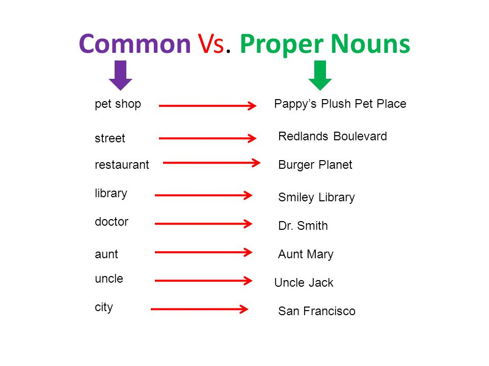Common Vs. Proper Nouns pet shop Pappy's Plush Pet Place street