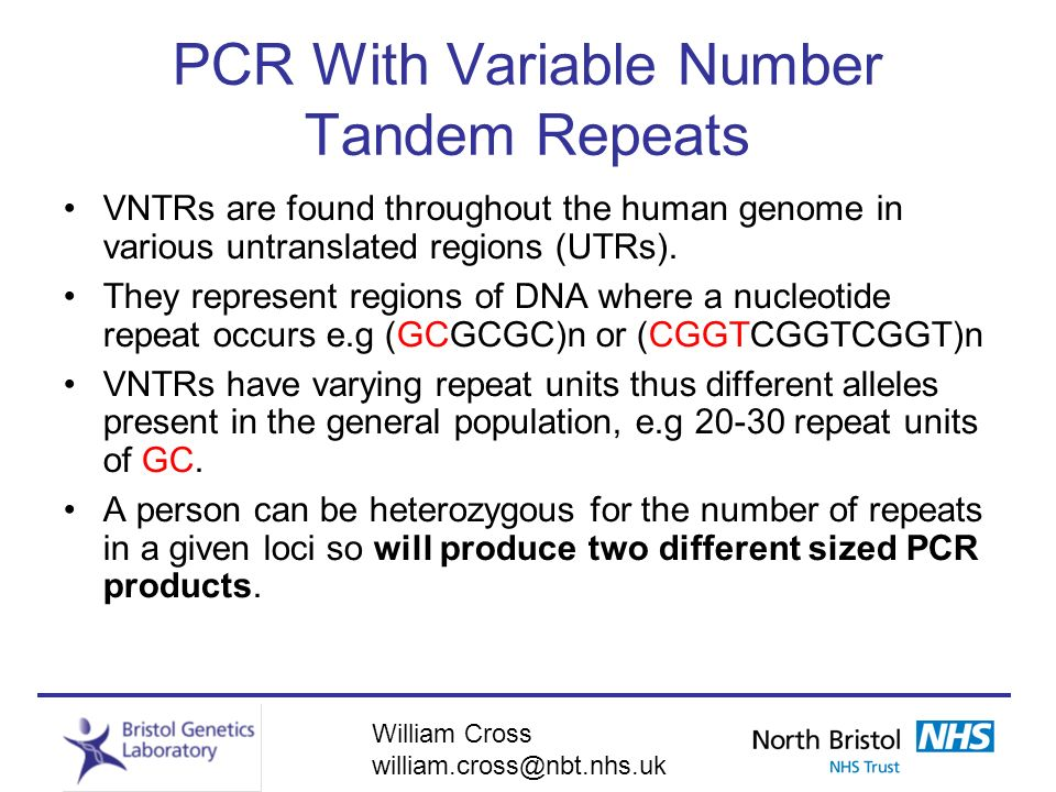 PCR With Variable Number Tandem Repeats