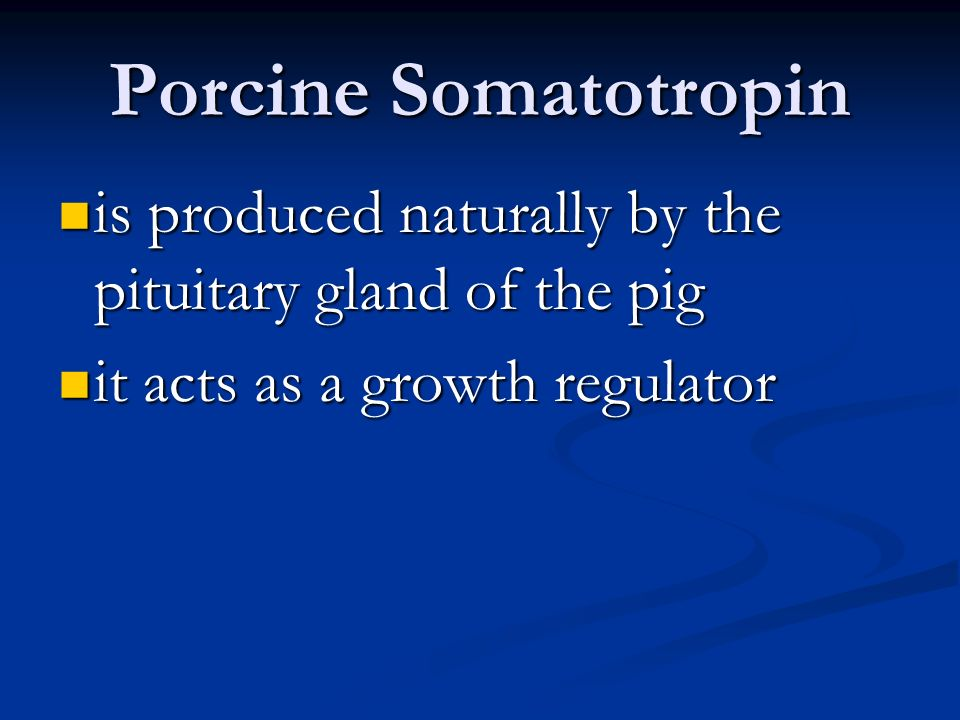 Porcine Somatotropin is produced naturally by the pituitary gland of the pig.