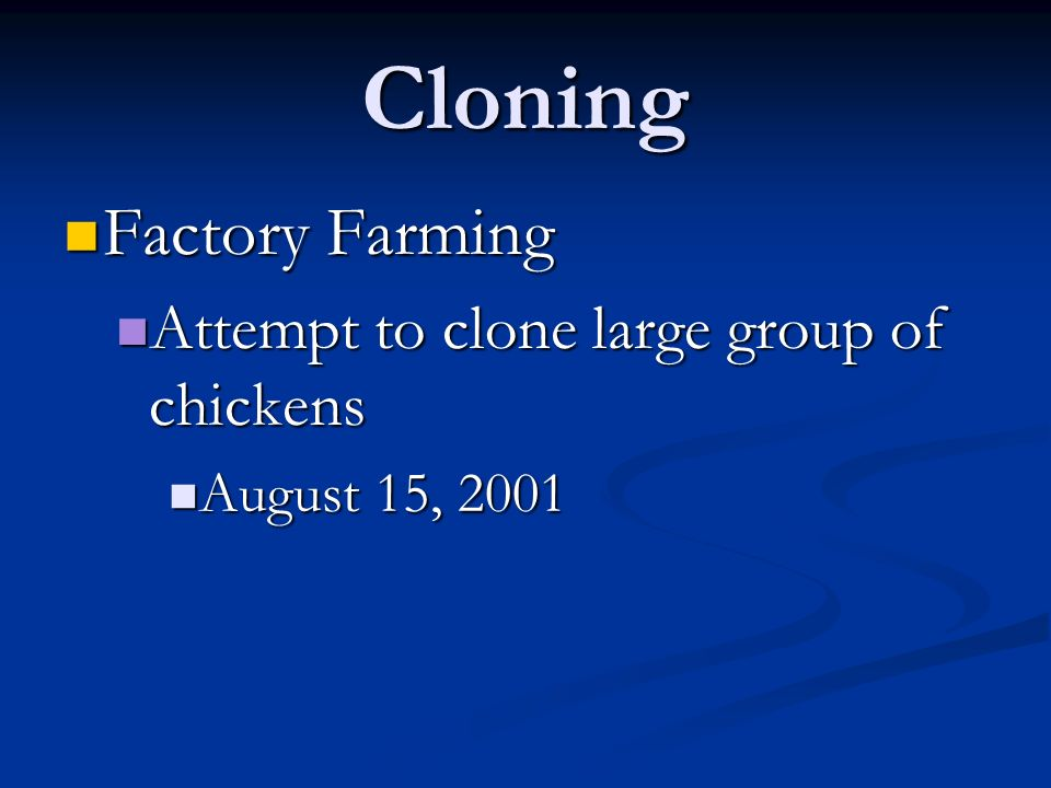 Cloning Factory Farming Attempt to clone large group of chickens