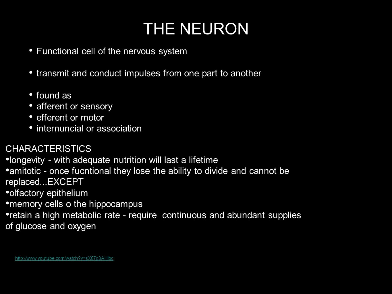 THE NEURON Functional cell of the nervous system