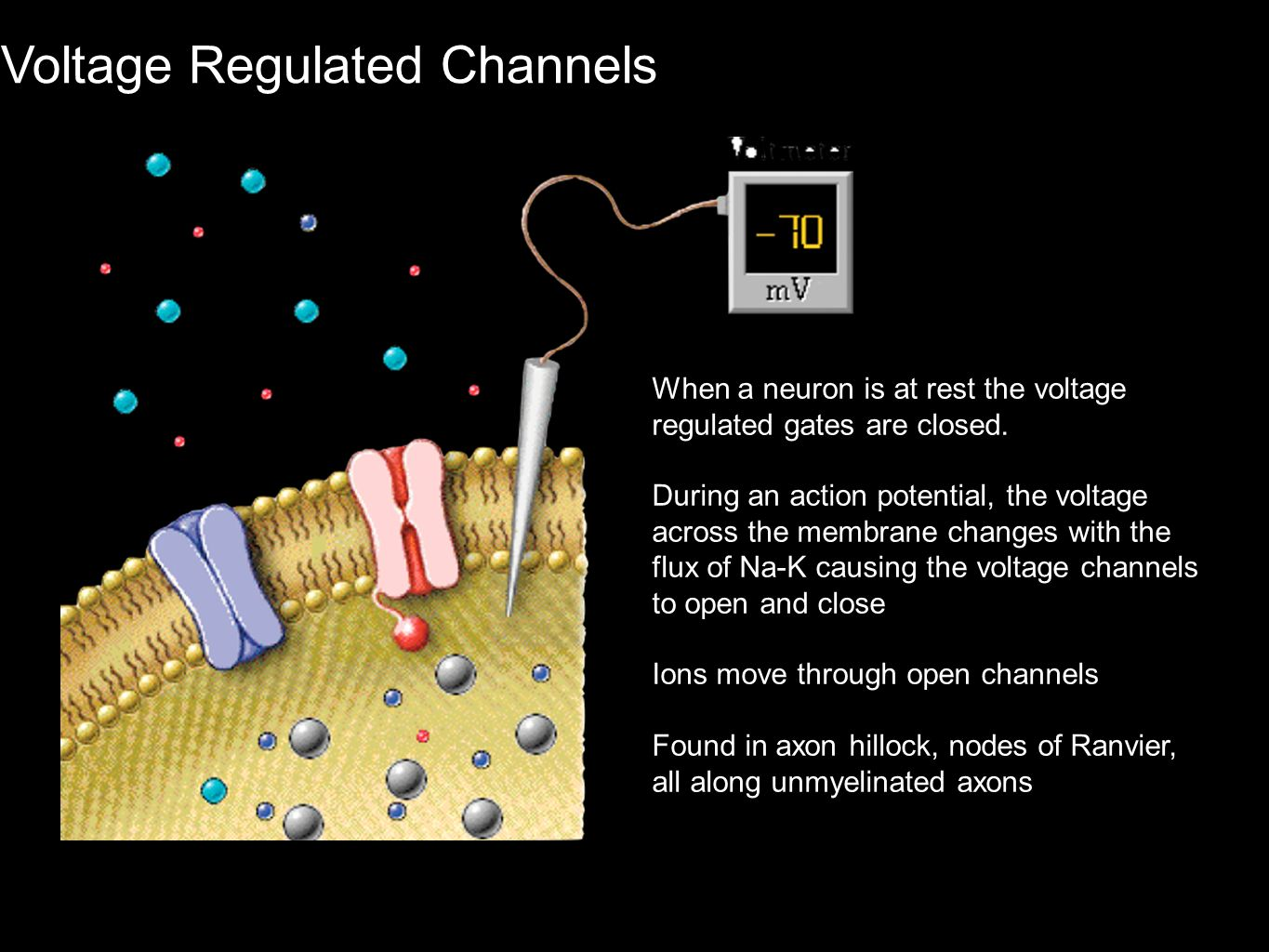 Voltage Regulated Channels