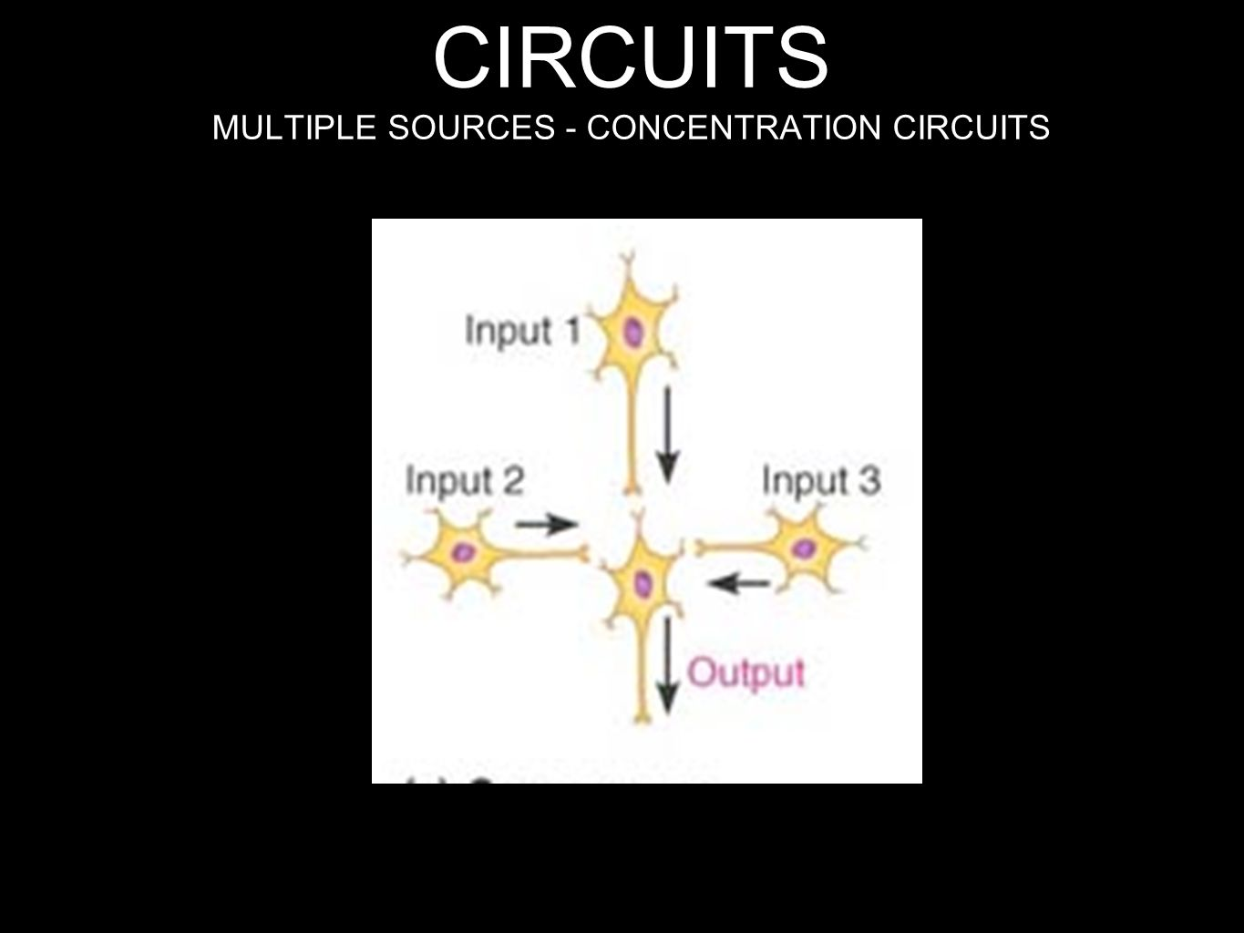 CONVERGENT CIRCUITS MULTIPLE SOURCES - CONCENTRATION CIRCUITS