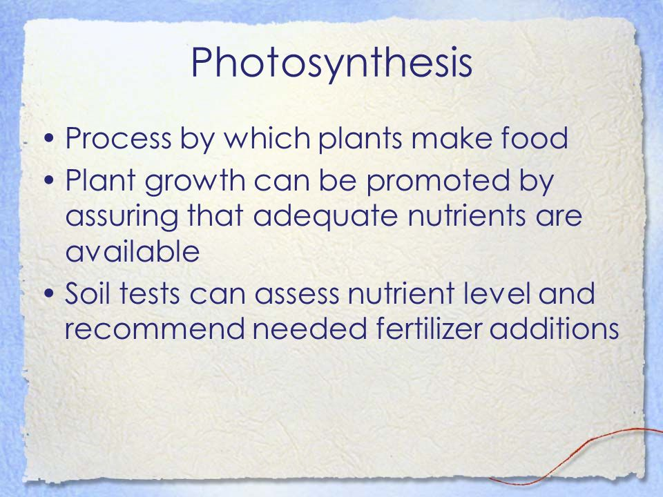 Photosynthesis Process by which plants make food