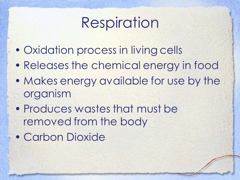 Respiration Oxidation process in living cells