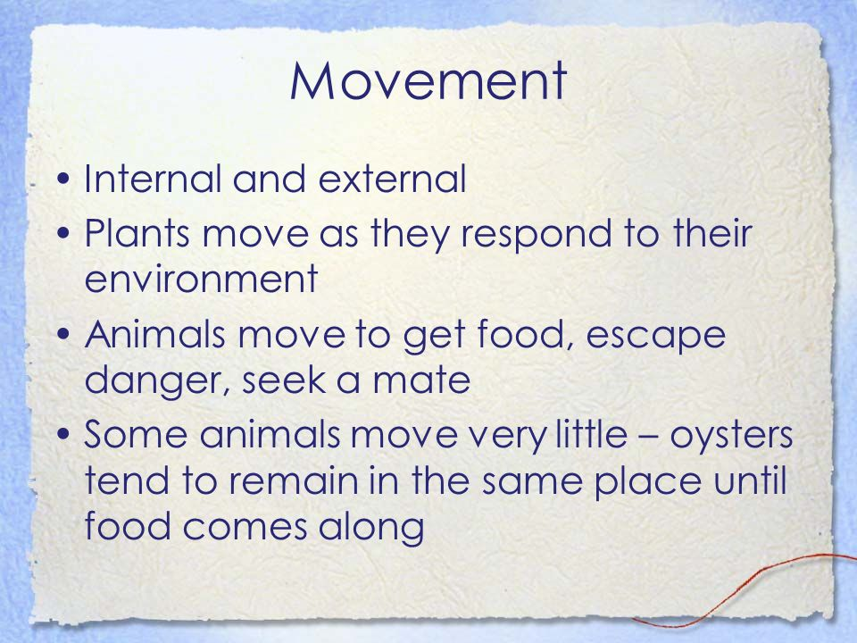 Movement Internal and external