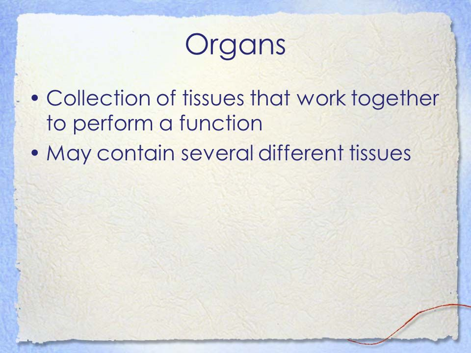 Organs Collection of tissues that work together to perform a function