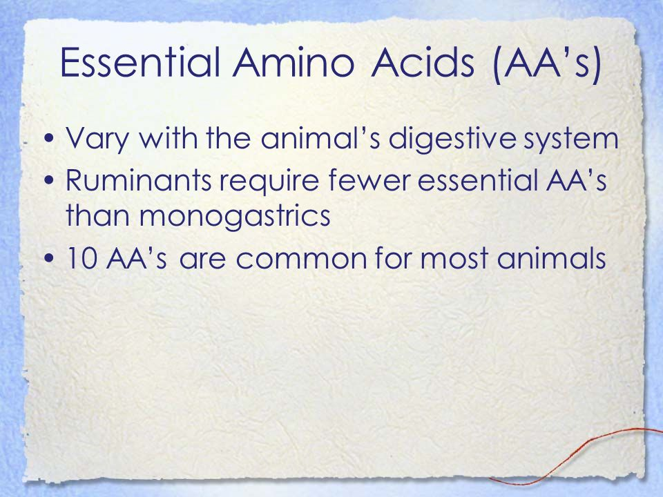 Essential Amino Acids (AA's)