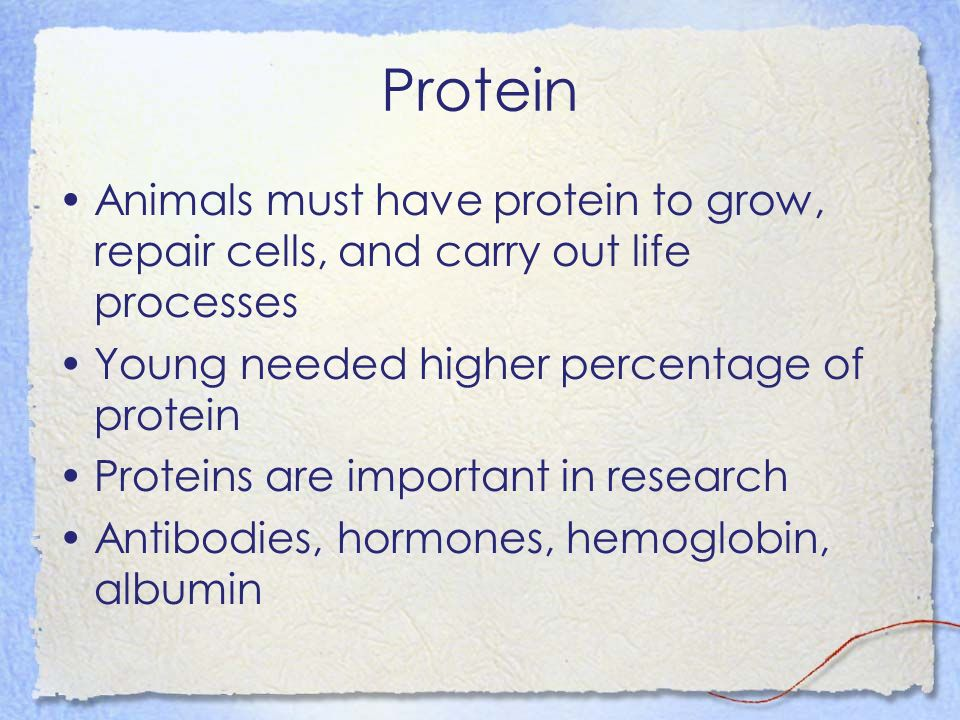 Protein Animals must have protein to grow, repair cells, and carry out life processes. Young needed higher percentage of protein.