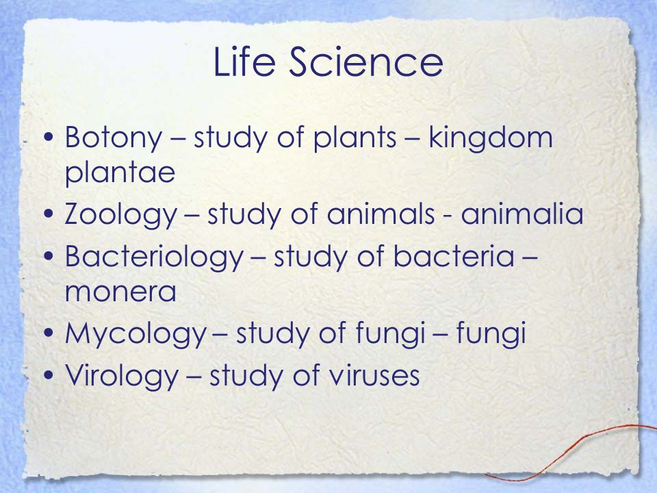 Life Science Botony – study of plants – kingdom plantae