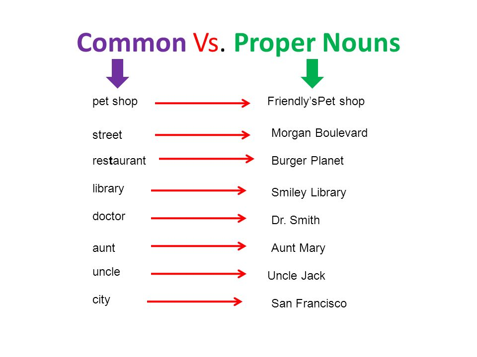 Common Vs. Proper Nouns pet shop Friendly'sPet shop street
