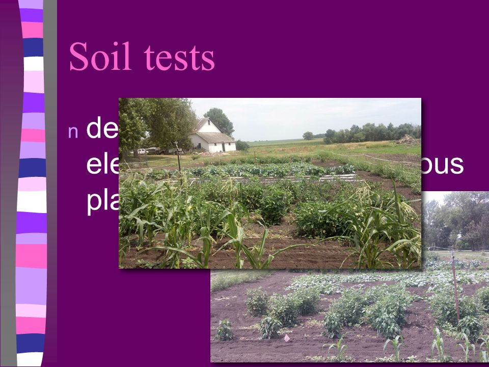 Soil tests determine amount of elements needed for various plants.