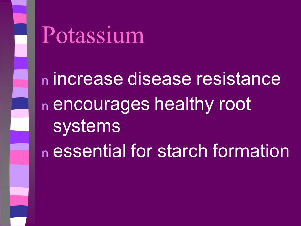 Potassium increase disease resistance encourages healthy root systems