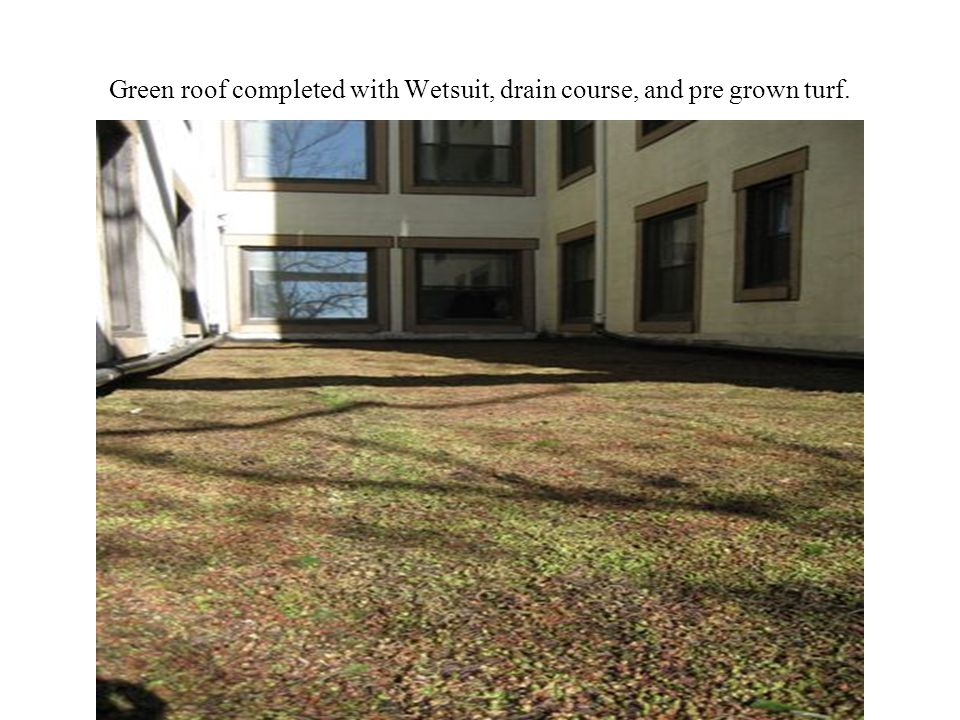 Green roof completed with Wetsuit, drain course, and pre grown turf.
