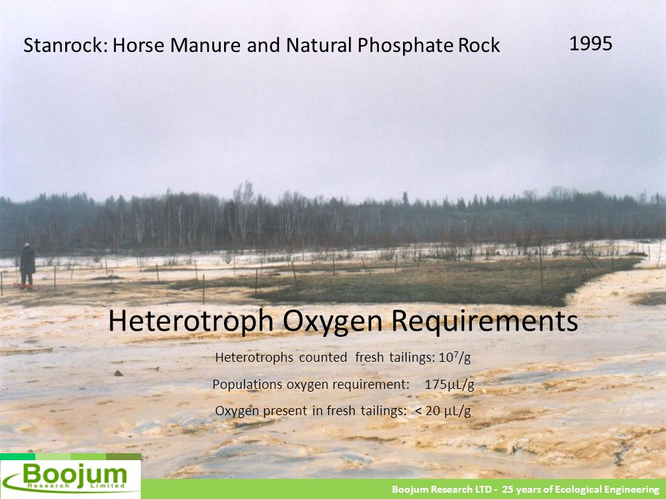 Heterotroph Oxygen Requirements