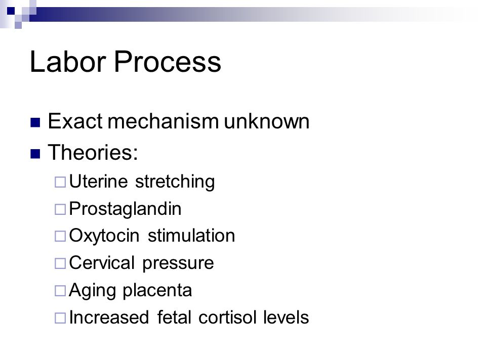 Labor Process Exact mechanism unknown Theories: Uterine stretching