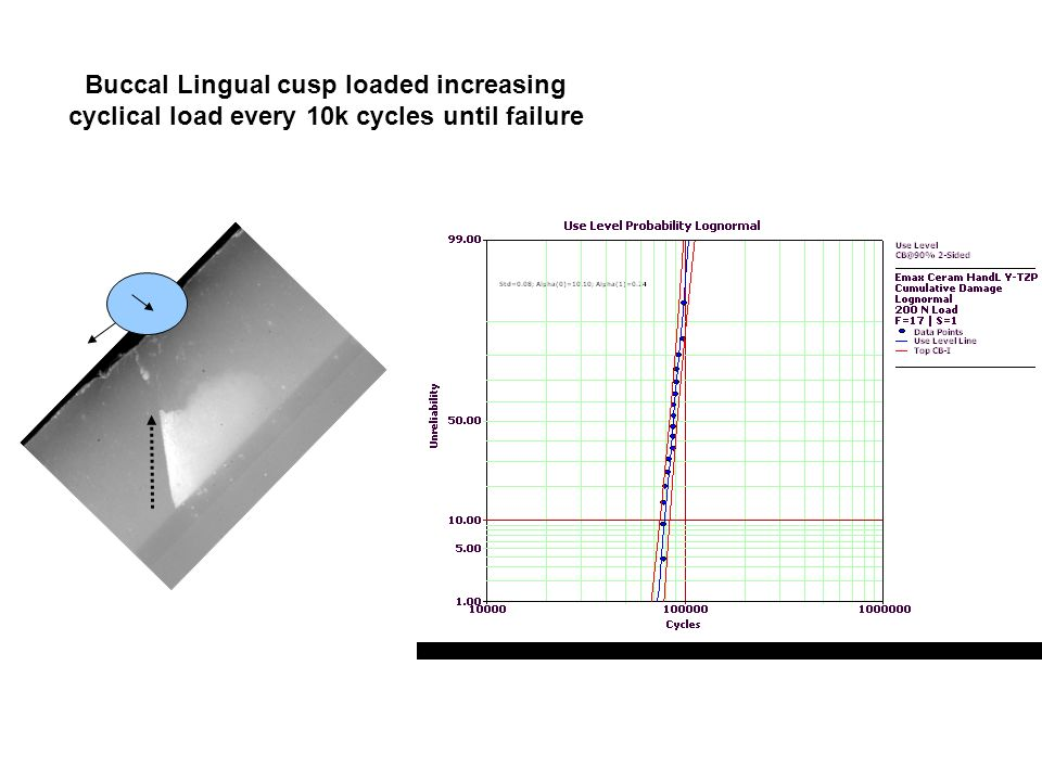 Buccal Lingual cusp loaded increasing cyclical load every 10k cycles until failure