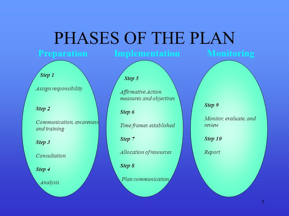 PHASES OF THE PLAN Preparation Implementation Monitoring Step 1