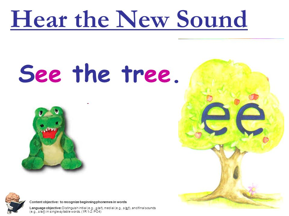 Hear the New Sound See the tree.