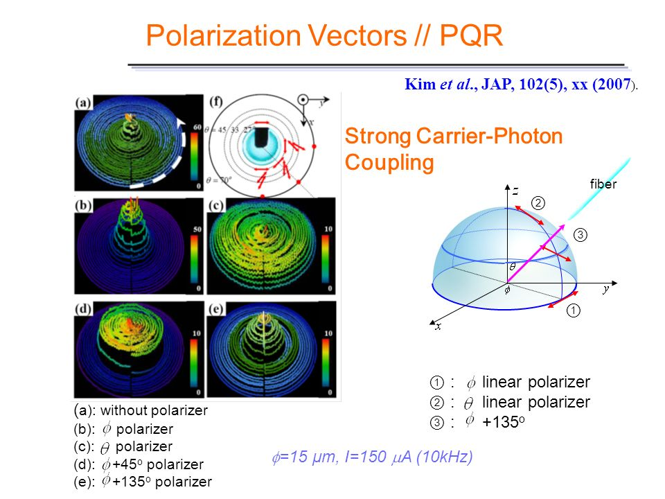 Polarization Vectors // PQR