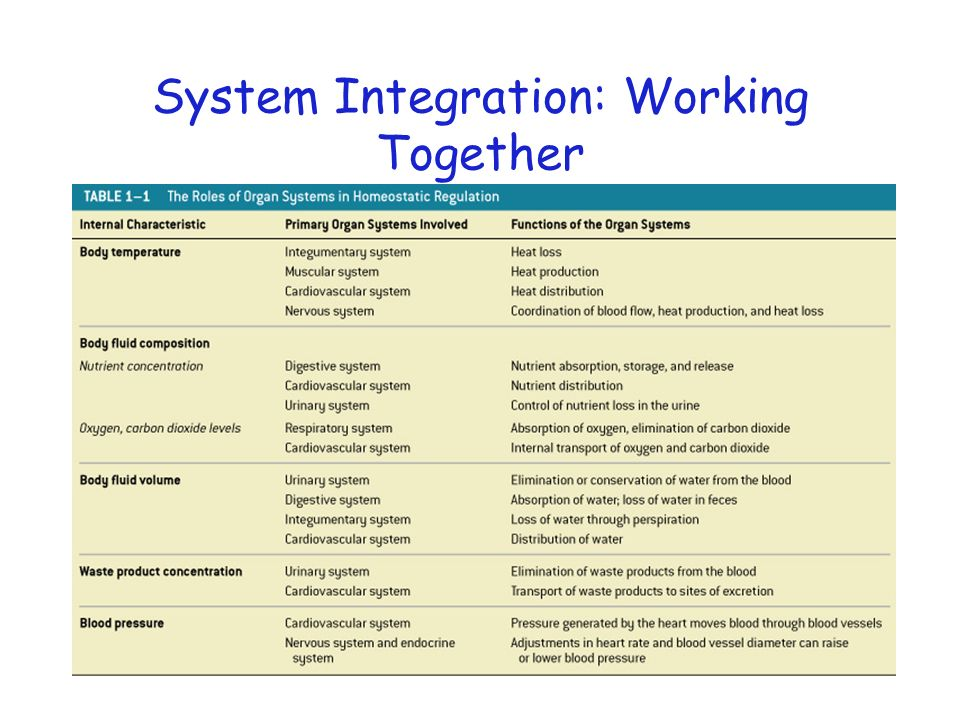 System Integration: Working Together