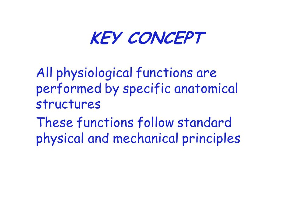KEY CONCEPT All physiological functions are performed by specific anatomical structures.