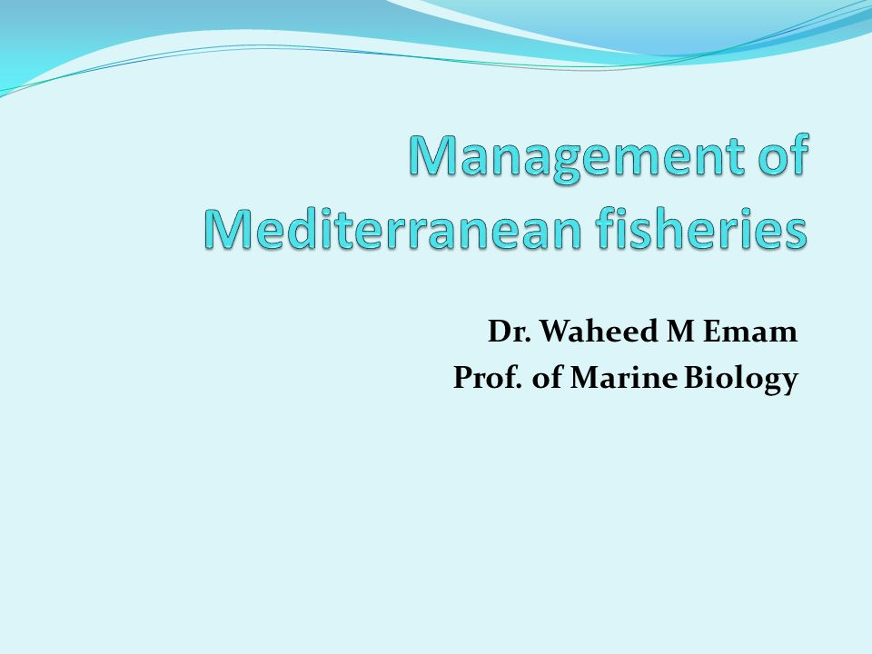 Management of Mediterranean fisheries