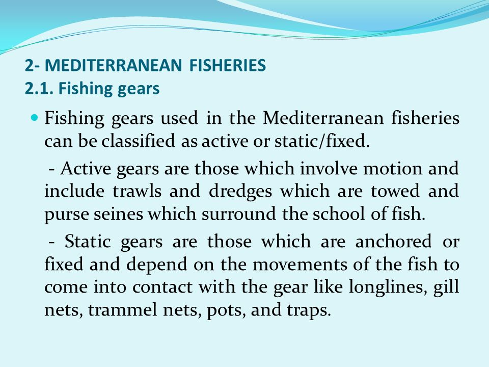2- MEDITERRANEAN FISHERIES 2.1. Fishing gears