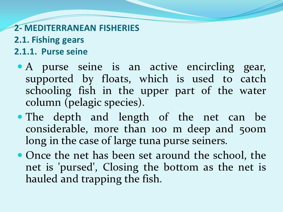 2- MEDITERRANEAN FISHERIES 2.1. Fishing gears 2.1.1. Purse seine