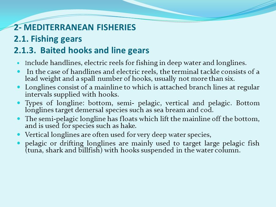 2- MEDITERRANEAN FISHERIES 2. 1. Fishing gears 2. 1. 3