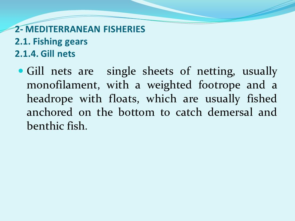 2- MEDITERRANEAN FISHERIES 2.1. Fishing gears Gill nets