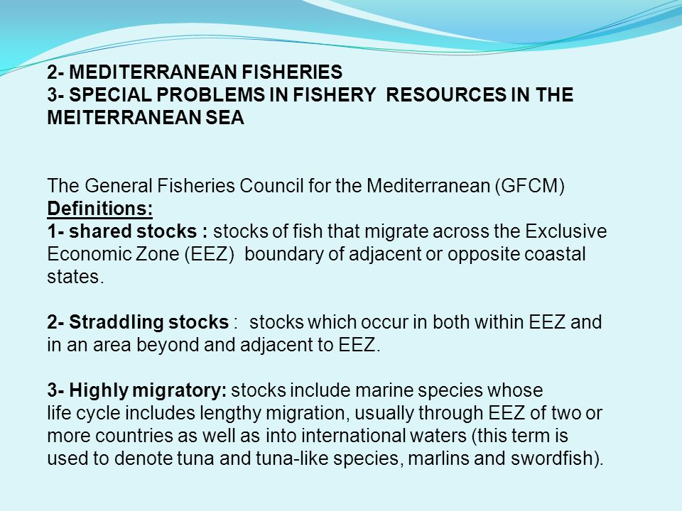 2- MEDITERRANEAN FISHERIES 3- SPECIAL PROBLEMS IN FISHERY RESOURCES IN THE MEITERRANEAN SEA