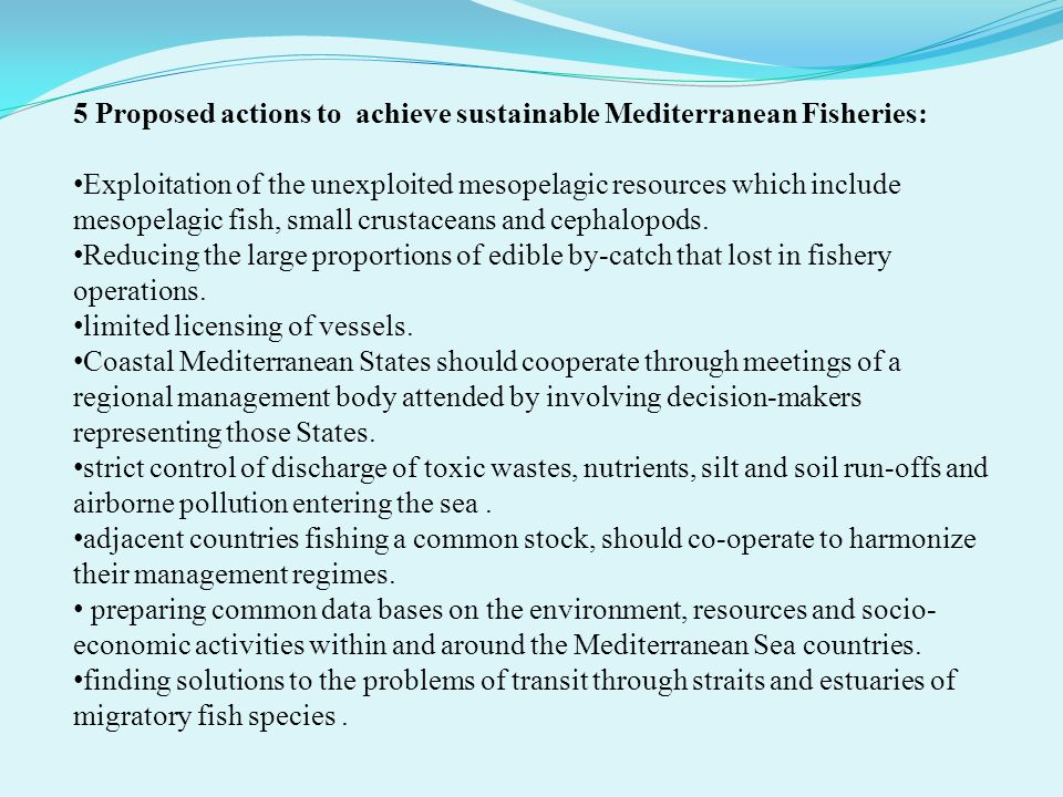 5 Proposed actions to achieve sustainable Mediterranean Fisheries: