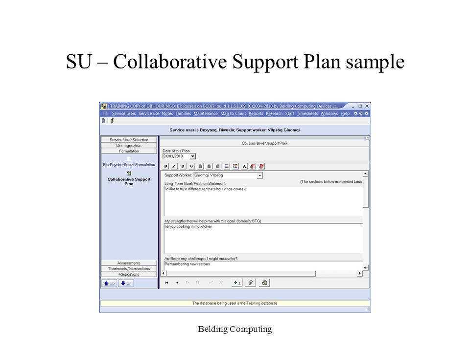 SU – Collaborative Support Plan sample