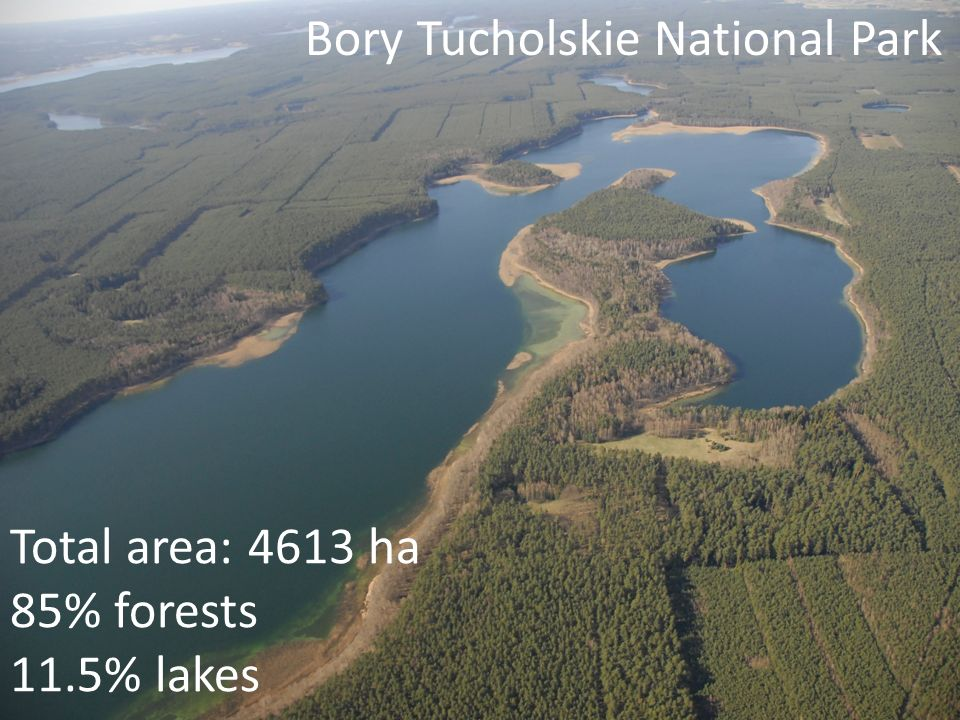 Bory Tucholskie National Park