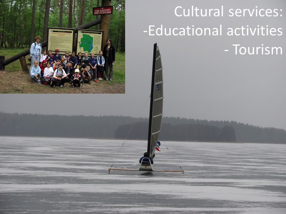 Cultural services: Educational activities Tourism