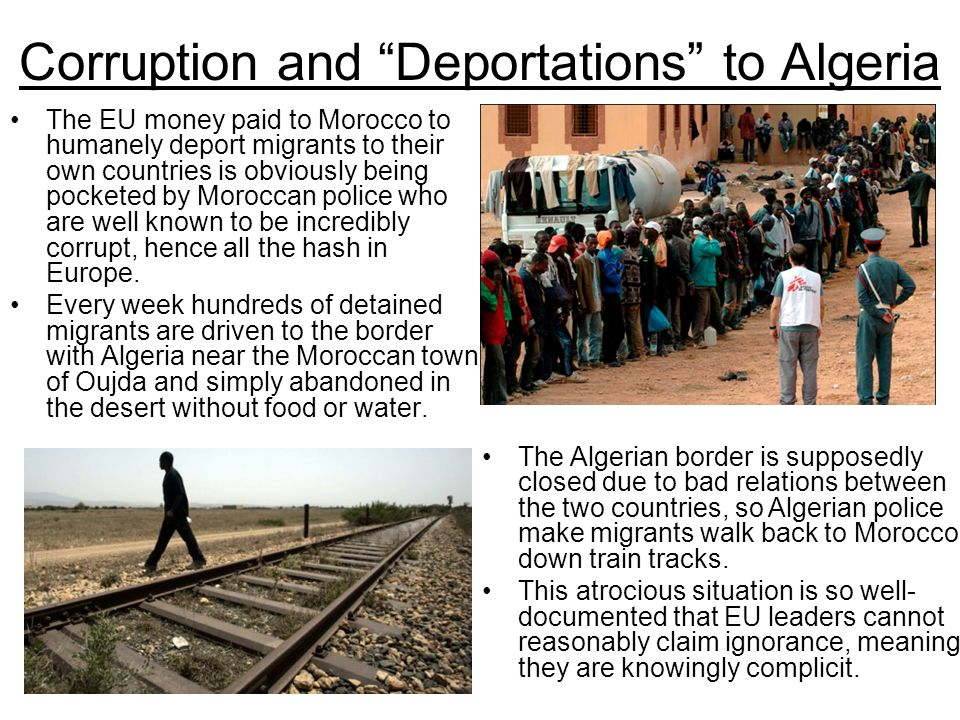 Corruption and Deportations to Algeria