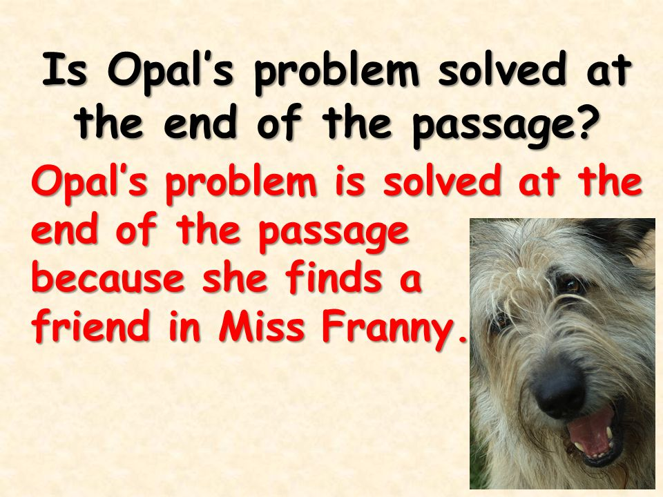 Is Opal's problem solved at the end of the passage