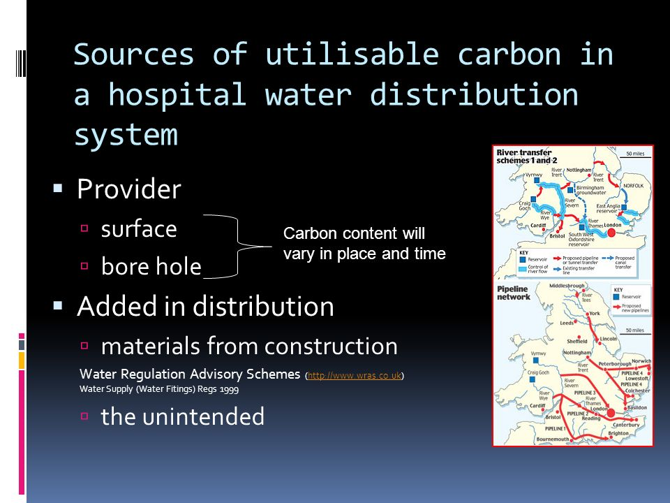 Sources of utilisable carbon in a hospital water distribution system
