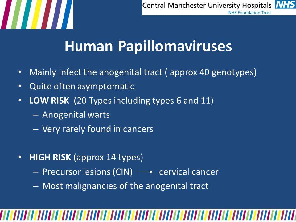 papillomavírus nhs