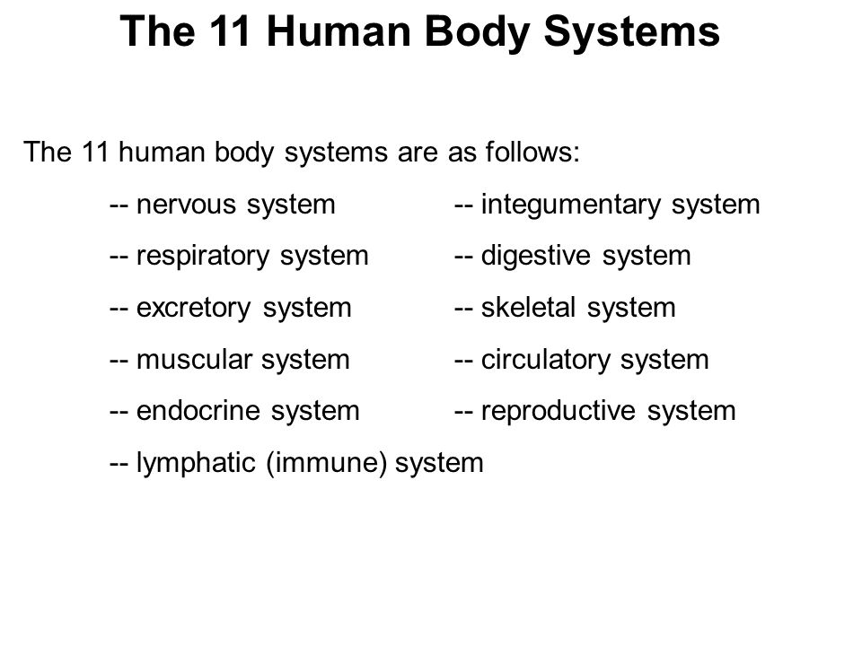 Human Anatomy And Body Systems Ppt Video Online Download