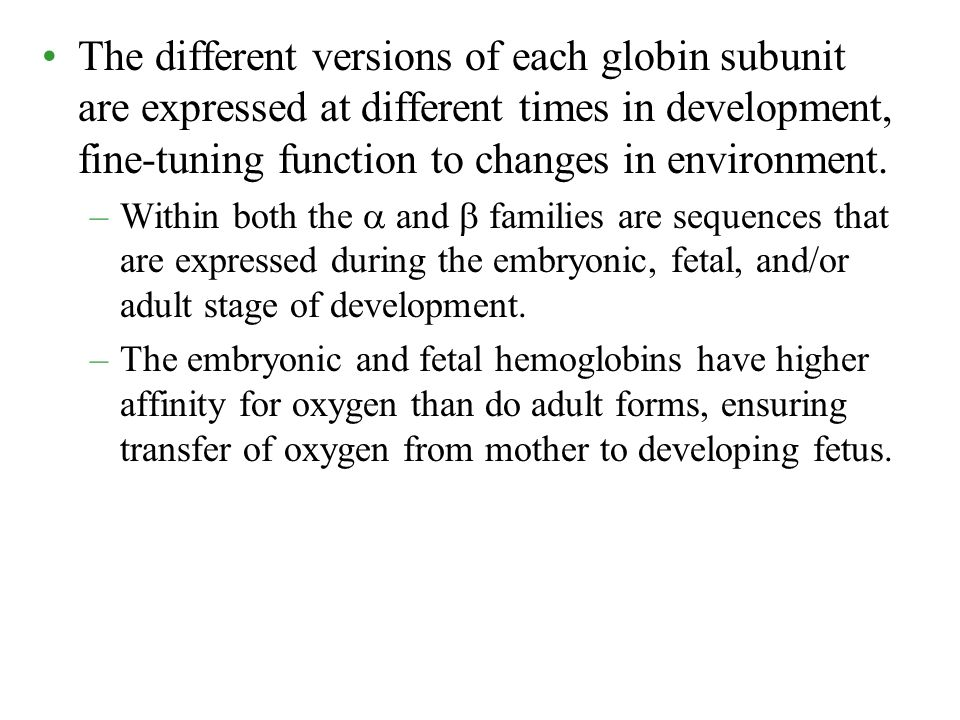 The different versions of each globin subunit are expressed at different times in development, fine-tuning function to changes in environment.