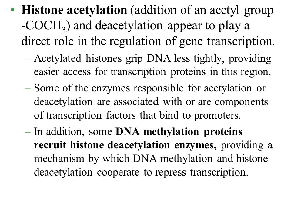 Histone acetylation (addition of an acetyl group -COCH3) and deacetylation appear to play a direct role in the regulation of gene transcription.