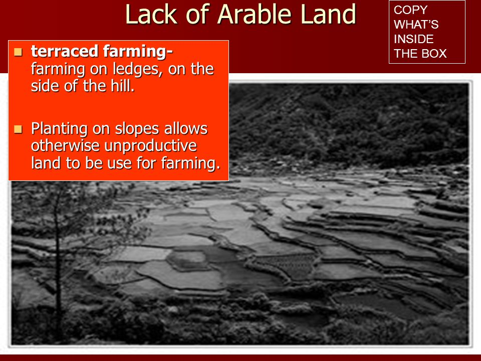Lack of Arable Land COPY WHAT'S INSIDE THE BOX. terraced farming- farming on ledges, on the side of the hill.