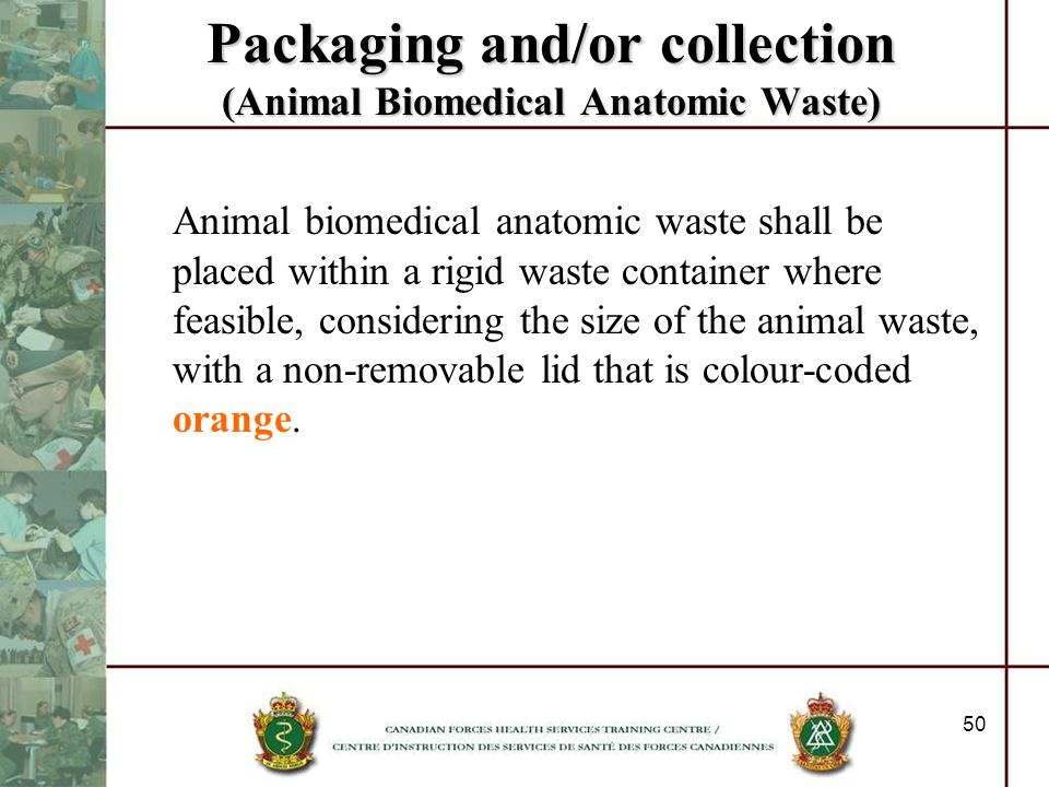 Packaging and/or collection (Animal Biomedical Anatomic Waste)