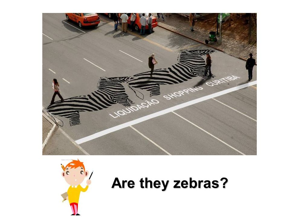 Are they zebras