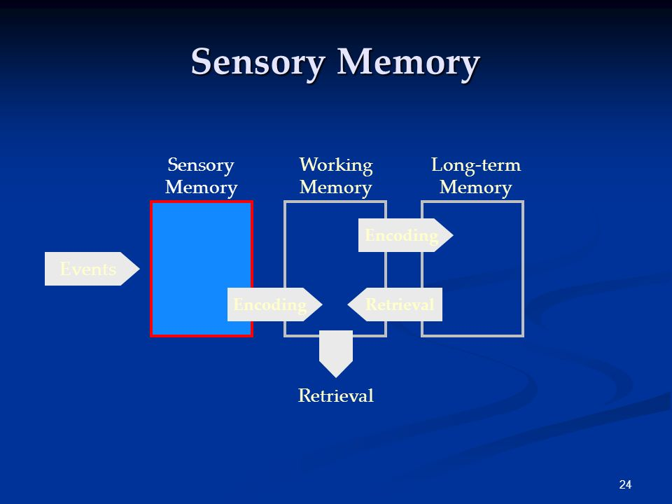 Sensory Memory Sensory Memory Working Memory Long-term Memory Events