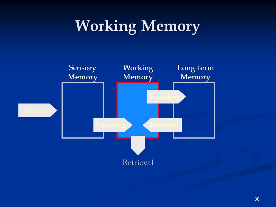 Working Memory Sensory Memory Working Memory Long-term Memory Events