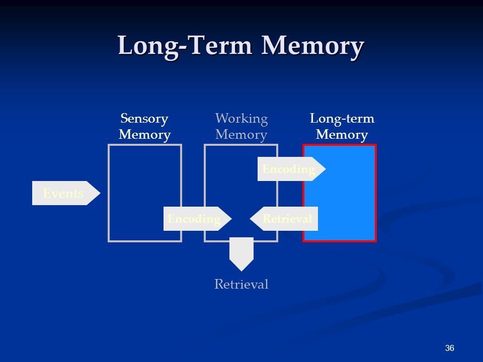 Long-Term Memory Sensory Memory Working Memory Long-term Memory Events